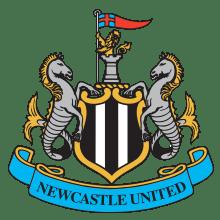 Футболки, майки и другая одежда футбольного клуба Ньюкасл Юнайтед