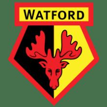 Футболки, майки и другая одежда футбольного клуба Уотфорд