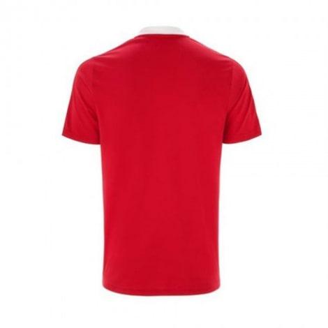 Поло футболка Аякс 2021-2022 сзади