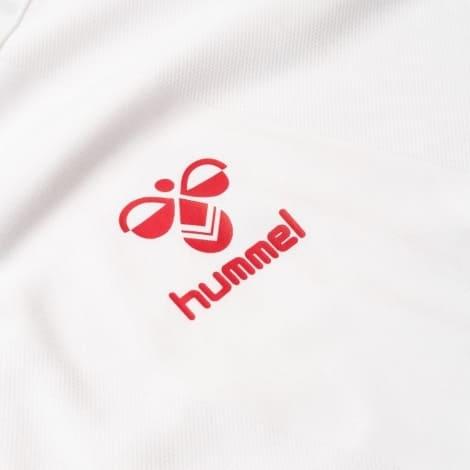 Гостевая футболка сборной Дании на чемпионат мира 2018 лого