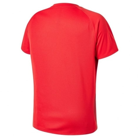 Тренировочная футболка Ливерпуля 2018-2019 сзади