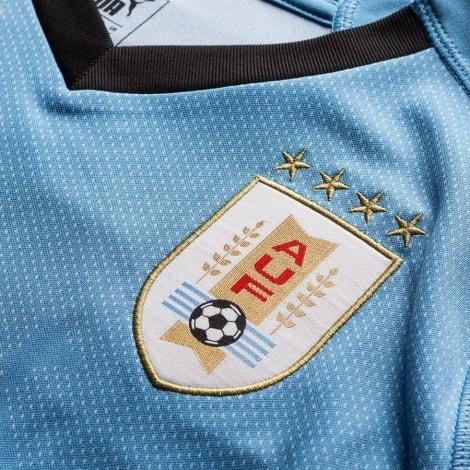 Домашняя футболка сборной Уругвая на Мундиаль 2018