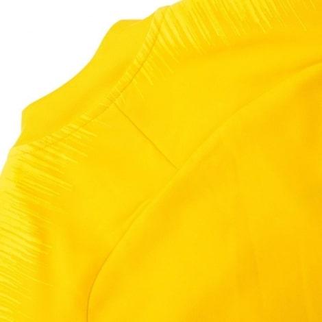 Взрослый желто-синий тренировочный костюм Челси 2018-2019 кофта сзади