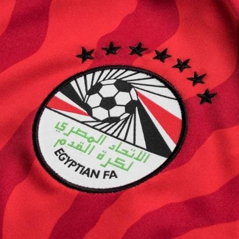 Домашняя футболка сборной Египта 2019-2020 герб сборной