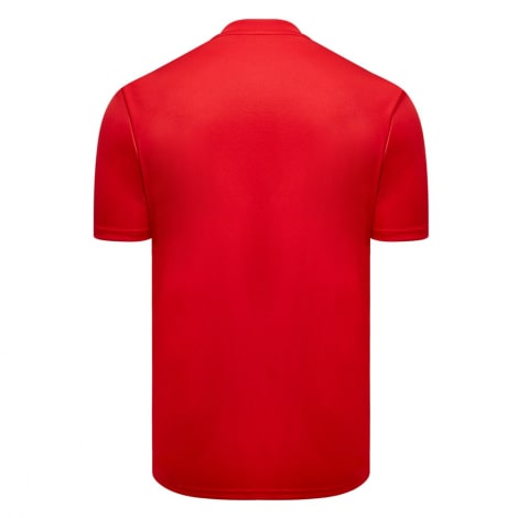 Гостевая игровая футболка Фулхэма 2019-2020 сзади