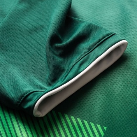 Домашняя футболка Мексики на ЧМ 2018 Чичарито номер 14 рукав