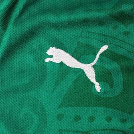 Зезеная гостевая футболка сборной Сенегала на чемпионат мира 2018 эмблема