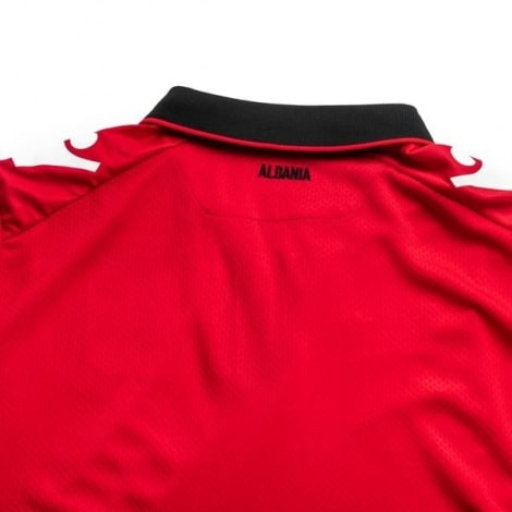 Домашняя игровая футболка сборной Албании 2020-2021 года воротник сзади