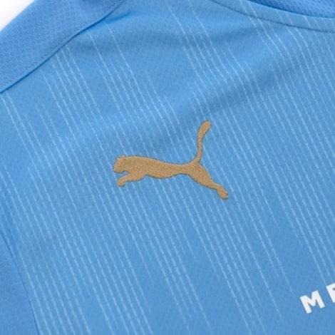 Гостевая игровая футболка ПСВ 2020-2021 бренд