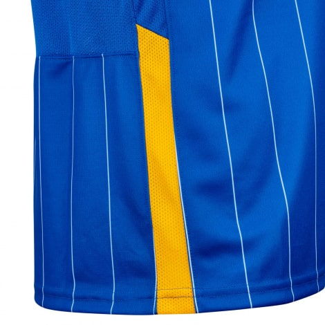Домашняя игровая футболка Брайтон энд Хоув Альбион 2020-2021