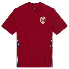 Домашняя футболка Норвегии на ЕВРО 2020-2021