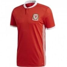 Домашняя футболка сборной Уэльса на чемпионат мира 2018
