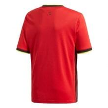 Домашняя футболка сборной Бельгии на ЕВРО 2020 футболка сзади