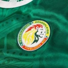 Зезеная гостевая футболка сборной Сенегала на чемпионат мира 2018 логотип