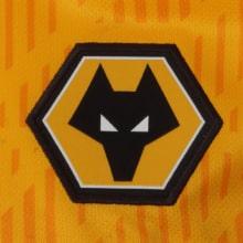 Комплект взрослой домашней формы Вулверхэмптона 20-21 футболка герб клуба